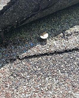 roof leak from improperly driven nail